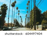 beautiful tall palm trees... | Shutterstock . vector #604497404