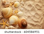 summer background. seashells on ... | Shutterstock . vector #604586951