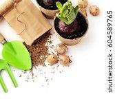 gardening tools  watering can ... | Shutterstock . vector #604589765