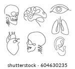 one line human organs set... | Shutterstock .eps vector #604630235