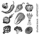set hand drawn elements with... | Shutterstock .eps vector #604692107