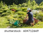 Young Active Woman Gardening...
