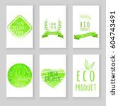 set of eco friendly labels.... | Shutterstock .eps vector #604743491
