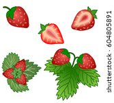 strawberry set. whole and cut... | Shutterstock .eps vector #604805891