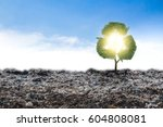 concept recycle big alone tree... | Shutterstock . vector #604808081