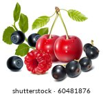 photo realistic vector of... | Shutterstock .eps vector #60481876