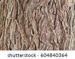 background from texture of... | Shutterstock . vector #604840364