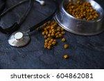 veterinary theme | Shutterstock . vector #604862081