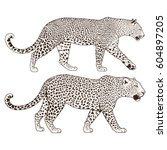 leopard face tattoo  vector...   Shutterstock .eps vector #604897205