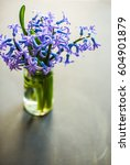 Bouquet Of Bright Blue Hyacint...