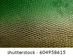 green snake skin texture... | Shutterstock . vector #604958615
