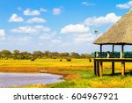 wildlife watching lodge. tsavo... | Shutterstock . vector #604967921