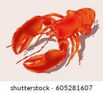 lobster isolated | Shutterstock .eps vector #605281607