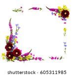 Small photo of Frame of wildflowers: Malva (Alcea rugosa, Hollyhock), Lythrum salicaria, Epilobium, Linaria vulgaris (toadflax) and chicory on a white background with space for text. Top view, flat lay