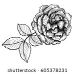 hand drawn and sketch style... | Shutterstock .eps vector #605378231