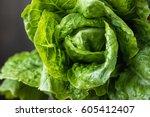 fresh green romano lettuce.... | Shutterstock . vector #605412407