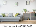 living room with grey sofa ... | Shutterstock . vector #605420609