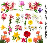 collection of beautiful... | Shutterstock . vector #605435999