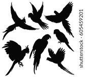 vector parrots  amazon jungle... | Shutterstock .eps vector #605459201