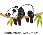 a hand drawn sketch of a panda... | Shutterstock .eps vector #605674424