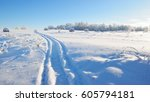 Tracks On A Snowcovered Field...