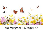 Stock photo flowers and butterflies 60580177