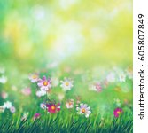 beauty summer meadow with... | Shutterstock . vector #605807849