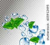 water droplets and mint leaves. ... | Shutterstock .eps vector #605912495