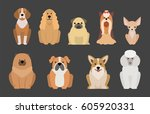 funny cartoon dog character... | Shutterstock .eps vector #605920331