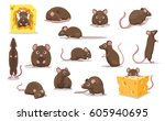 cute brown rat various poses... | Shutterstock .eps vector #605940695