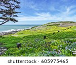 idyllic beach scene  empty...   Shutterstock . vector #605975465