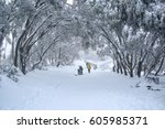 winter cold day with landscape...   Shutterstock . vector #605985371