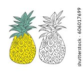 hand drawn vector pineapple | Shutterstock .eps vector #606017699