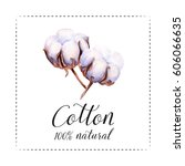 hand painted watercolor cotton... | Shutterstock . vector #606066635
