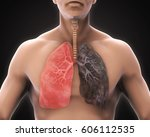 healthy lung and smokers lung.... | Shutterstock . vector #606112535