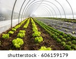 Interior Of An Agricultural...