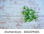 fresh mint on wooden background ... | Shutterstock . vector #606209681