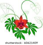 wild orchid | Shutterstock . vector #60621409