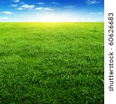 field of grass blue sky and sun. | Shutterstock . vector #60626683
