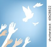 hands releasing white dove on... | Shutterstock .eps vector #60628822