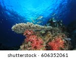 coral reef and fish underwater... | Shutterstock . vector #606352061