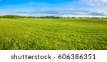grass field  green spring... | Shutterstock . vector #606386351