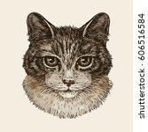 Drawn Portrait Of Cute Kitten....