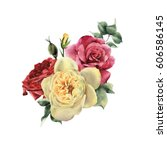 bouquet of roses  watercolor ... | Shutterstock . vector #606586145