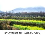 the colorful countryside... | Shutterstock . vector #606607397