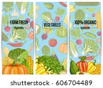 organic vegetable farming... | Shutterstock .eps vector #606704489