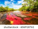 multicolored river in colombia  ... | Shutterstock . vector #606918761