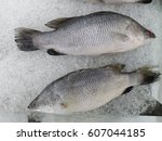 Fresh Fish Is Displayed In A...