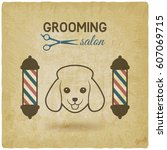 pet grooming salon logo design... | Shutterstock .eps vector #607069715