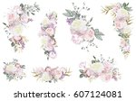 floral illustration   pink... | Shutterstock . vector #607124081